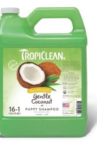 Gentle Coconut Shampoo – 3,78 L